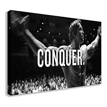 A3 A4 SIZE ARNOLD SCHWARZENEGGER CONQUER POSTER FITNESS GYM PRINT IMAGE