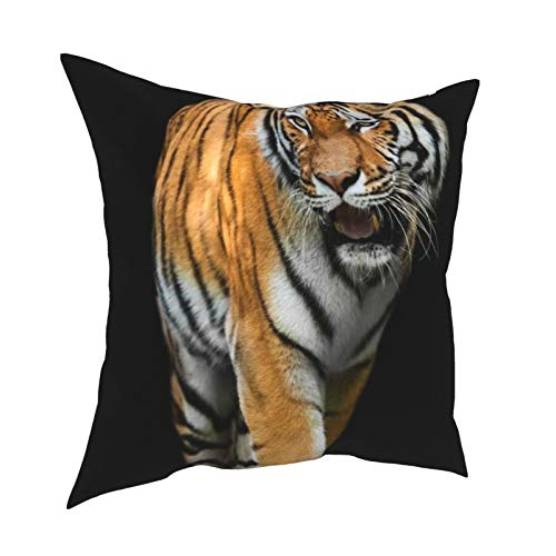 iksrgfvb Pillow Case Cushion Covers Tiger With Black Background Square Pillowcases for Living Room Sofa 18 x 18 inch