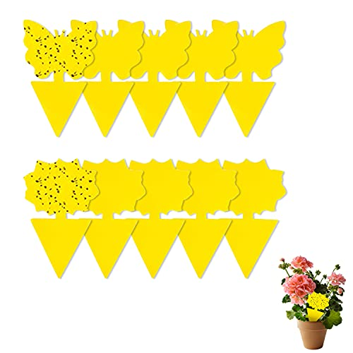 Sticky Fruit Fly and Fungus Gnat Trap Yellow Sticky Bug Insect Killer for...