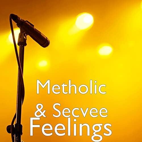 Metholic & SecVee
