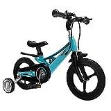 WJS Bicicletas Infantiles,Bicicletas Niño Niña 2-8 Años,Bicicletas 12 14 16 Pulgadas,Ruedas Auxiliares Bicicleta para Niños,Rosa(Size:14inch,Color:Blue)