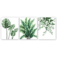 Tropical Green Leaves Art Prints,Botanical Wall Art Paintings,Signs Of Nature Set of 3(8''x10'') Can...