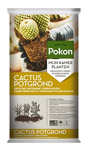 Pokon Kakteen-Erde, Kaktus-Erde, Blumenerde für Kakteen und Sukkulenten, wie Aloe Vera, mit 60 Tage Dünger, 5L