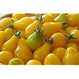 シードパケット:種子やOZ:イエロートマトの種、レア、NON-GMO、スウィート&ジューシー、FREE SHIPPING