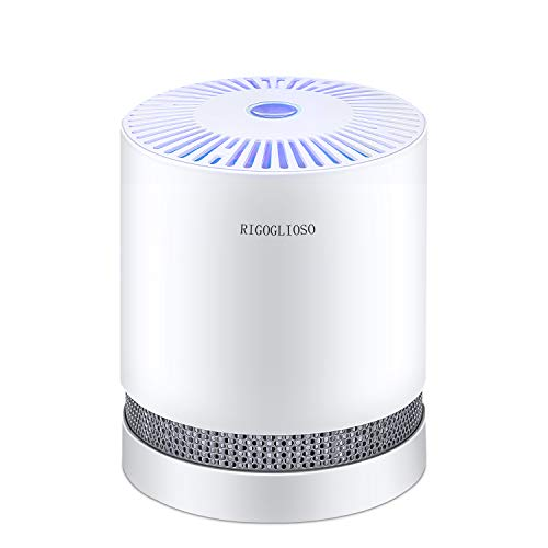 RIGOGLIOSO Home with True HEPA Filters, Compact Desktop Purifiers Filtration with Night Light, No Ozone, Air Cleaner for PM2.5, Allergies, Pets Dander, Cooking,Smokers,Dust, GL-2109