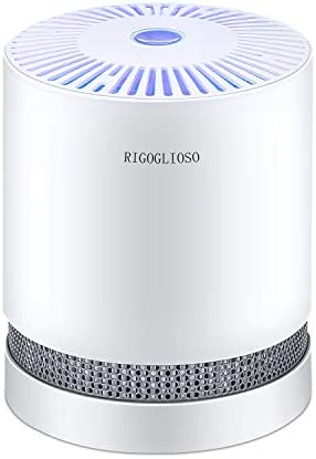 RIGOGLIOSO HEPA Air Purifier Smoke Air Purifiers for Home Bedroom Office 100 Ozone Free Purify product image