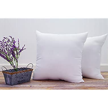 Pal Fabric (Set of 2) Premium Cotton Feel Microfiber Square Sham Pillow Insert 18x18 Made in USA