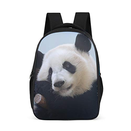 Cyliyuanye Animal Panda Durable Kids' Backpack School Book Bag For kids Adults Gift For Boys Girls bright gray onesize