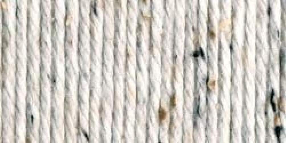 Bulk Buy: Lion Brand Hometown USA Yarn (3-Pack) Aspen Tweed 135-302