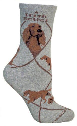 Wheel House Designs Setter irlandés diseño de perro Calcetines en color gris