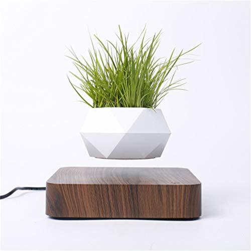 Kiko-ershaa Levitating Plant Pot Floating Air Bonsai Pot Suspension Blumentopf Pflanzgefäß für Schreibtischdekoration