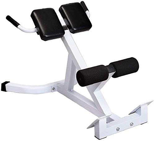 Strength Training Adjustable Benches - Bench Roman Chair Back ,Adjustable Bench Strength Training Back Machines