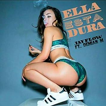Ella Esta Dura (feat. Demian M)