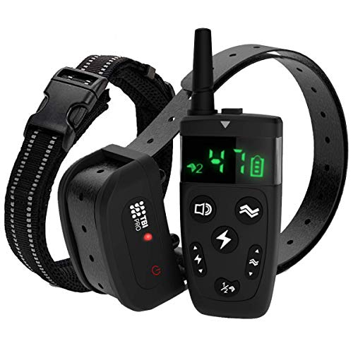 TBI Pro Dog Training Collar