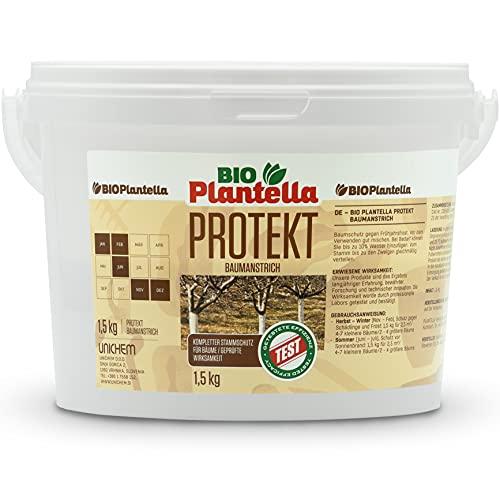 Bio Plantella Protekt Weißanstrich 1,5 kg | biologischer Schutz gegen Frost, Baumschädlinge, Pilzkrankheiten, etc. | Kalkanstrich für Bäume