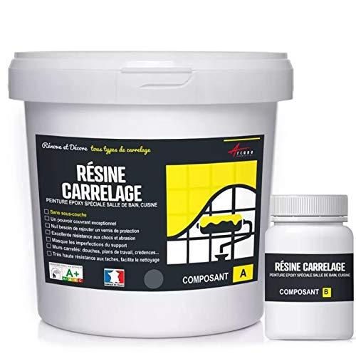 FLIESENLACK : Fliesenfarbe für Küche und Badezimmer - Wandfliesen - Eisengrau RAL 7011 - Kit 1kg bis zu 10 m² für 2 Schichten