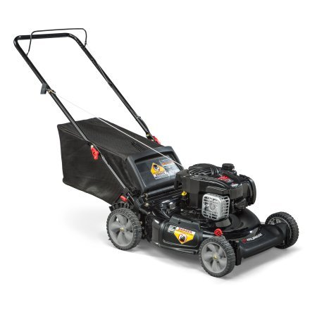 Murray 21' Gas Push Lawn Mower with Side Discharge, Mulching, Rear Bag