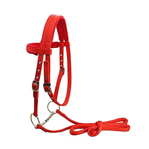 BoaInx Brida de Caballo Ajustable Hípica Equipo Halter Brida Caballo con Cabestro y Rein Cinta for la Caballo Ecuestre Accesorios Soft Espesar Accesorios para Montar (Color : Red)