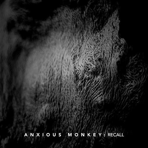 Anxious Monkey