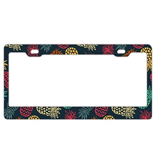 EXMENI Rainbow Pineapples License Plate Frame Theft-proof Frames Stainless Steel Board Frames
