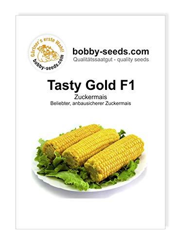 Bobby-Seeds Mais Samen Tasty Gold F1 Zuckermais Portion