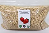 Soybeans, 5 Pounds Whole, USDA Certified Organic, Non-GMO Bulk, Product of USA, Mulberry Lane Farms