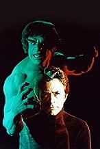 The Incredible Hulk Bill Bixby Lou Ferrigno Poster 18x24 Poster