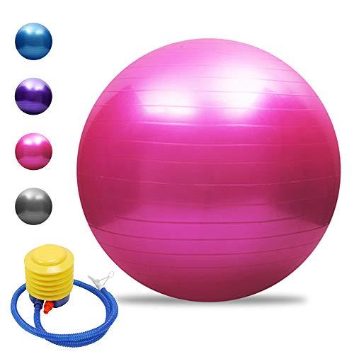 Tomshoo Pelota de yoga antipinchazos, gruesa, estable, pelota de equilibrio, pilates, barra, fitness, 45 cm/55 cm/65 cm/75 cm, bomba de aire, Rosa., 65 cm