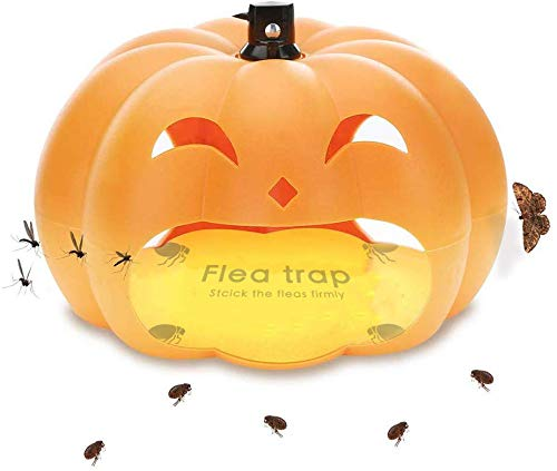 Heco Flea Trap with 2 Blue Discs Est Pest Control for Household Use, No Chemicals, Pumpkin Flea Trap Very Simple to Install. (Flea Trap)