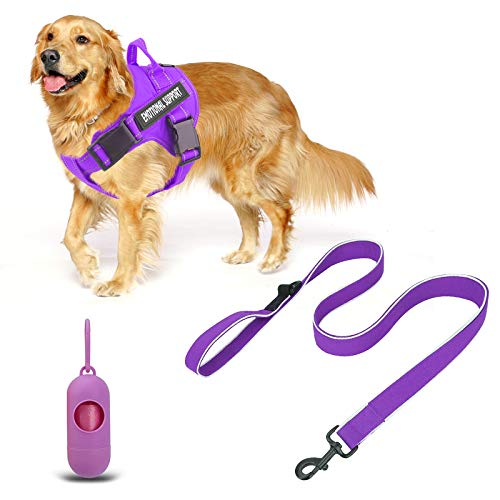 voopet Service Dog Harness (Purple,Large) and 4 Feet Dog Leash (Purple) with 4pcs Removeable Tags