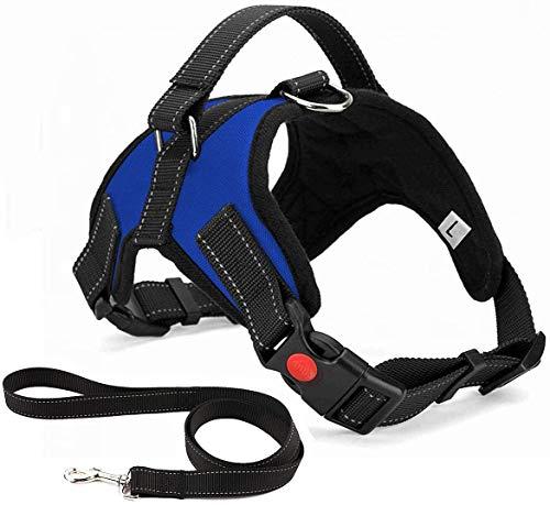 Arnés para perro de lujo, sin tirar, transpirable, ajustable, sin plomo incluida, para perros pequeños, medianos y grandes, ideal para entrenamiento de caminar (M azul)