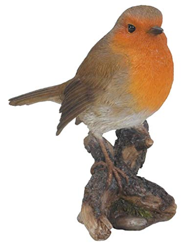 Britse vogels Robin op protocol - in hoge mate gedetailleerde uitgang- of tuindecoratie