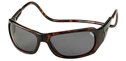Clic Magnetic Monarch Sunglasses in Tortoise