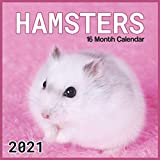 Hamsters Calendar 2021: Hamster Wall Calendar 2021-2022 Size 8.5 x 8.5 Inch Monthly Square Wall Calendar,16 Month Calendar 2021 Glossy Finish For Women, Men