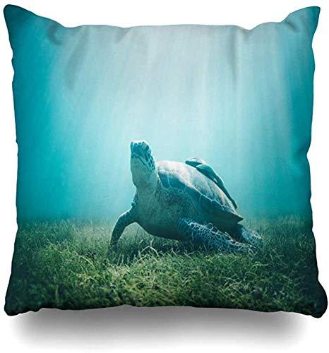 BONRI Throw Pillow Cover Dive Blue Light Underwater World Turtle Under Water Back Nature Mexico Ocean Design Funda de Almohada para el hogar Cuadrado Decorado con Cremallera Funda de alm16x16pulgada