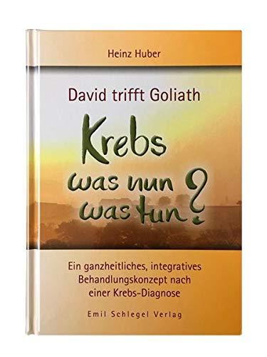 David trifft Goliath - Krebs was nun was tun?: Ein ganzheitliches, integratives Behandlungskonzept nach einer Krebs-Diagnose