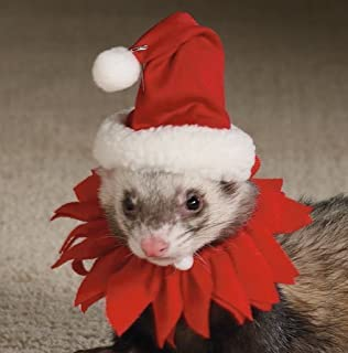 Best ferret christmas outfit Reviews