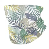 Set Palm Jungle Hojas Tropicales a prueba de polvo Magic Headwrap sin costuras, pañuelo anti UV/polvo para exteriores