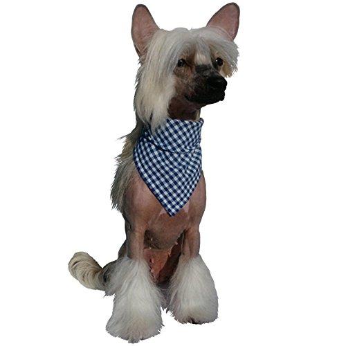 Dogsfield Foulard à Carreaux pour Chien Bleu XS -Halsumfang BIS 22 cm Bleu
