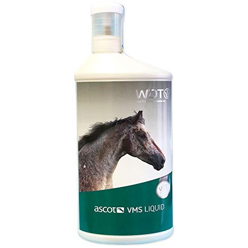 Tierarzt 24 Ascot VMS Liquid 1 Liter