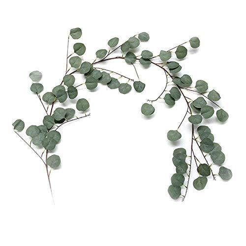 Künstliche Blätter, 2 Stück, Eukalyptus-Rattan, künstliche Pflanzenranken für Girlande, Kranz, Zuhause, Hochzeit, Party, Wanddekoration (170 cm)
