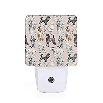 Oodles of Poodles Led Night Light with Dusk to Dawn Sensor Wall Lamp Home DÃcor,Nursery,Bathroom,Hallway,Staircase,Basement,Ideal Bedroom Night Lamp