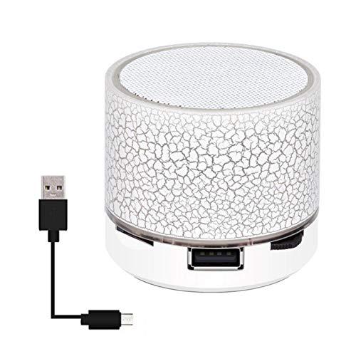 Werstand Altavoz Portátil Bluetooth Altavoces Super pequeños Compatible con Android e iOS y la mayoría de los Dispositivos Bluetooth Soporte TF tarjetau Disco Advantage