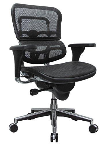 Eurotech Seating Ergohuman Mid Back Mesh Swivel Chair, Black