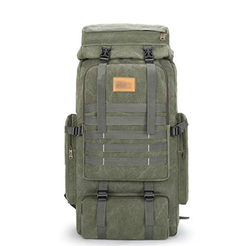 Hiking Backpacks Outdoor bag 80L large capacity outdoor travel backpack outdoor waterproof bag Camping Hiking Hunting Backpacks (Color : B)