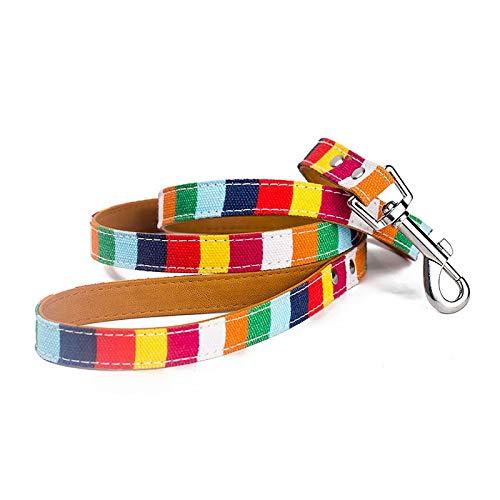 Multicolor Personalisieren Hundeleine Seil PU + Canvas Gehen Haustier-Leine Zubehör Artikel for Welpen Große Hunde Katzen Haustiere (Color : Multicolor, Size : 2.0x120cm)