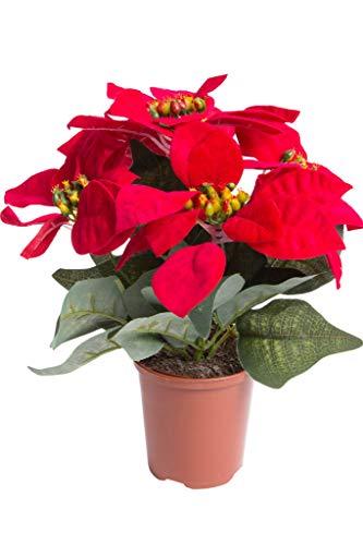 Flora-Seta GmbH künstliche Poinsettie (Weihnachtsstern) mit 5 samtigen Blüten in braunem Kunststofftopf Farbe: rot