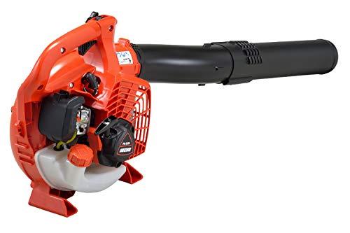 Soffiatore Motore A Scoppio Echo Pb 2520 Motore 25.4 Cc 0,91 Kw