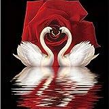 HAODGUO Bricolage 5d Diamond Embroidery Maison Decoration Diamond This Embroidery rheinstein Mosa 0c239que Diamond Swan Red Rose