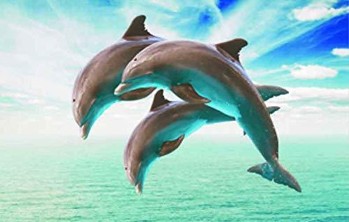 3 D Platzset Delfine, 2erSet, Tischset, Delfin, Tier Tiere